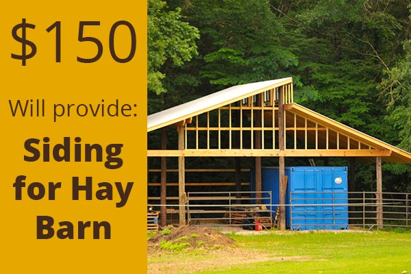 siding-for-hay-barn-hollow-creek-farm